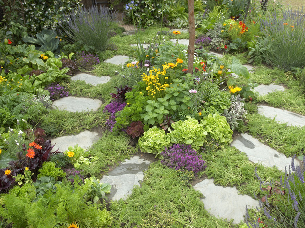 herb-garden-plans