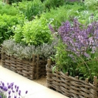 herb-container-garden-basket600x393