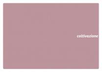 catalogo_erba_2017_mail-p37