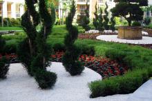 Озеленяване на вътрешен двор - Есте, София