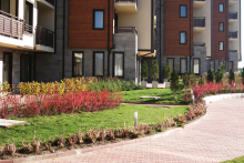 Озеленяване на хотел в Банско - Ню Гарден-ESEN-2-0013