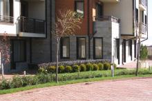 Озеленяване на хотел в Банско - Ню Гарден-ESEN-6-0017