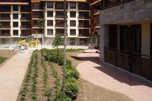 Озеленяване на хотел в Банско - Ню Гарден-NACHALO-13-0036