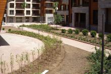 Озеленяване на хотел в Банско - Ню Гарден-NACHALO-9-0032