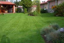 Озеленяване на двор, Драгалевци-4-0004