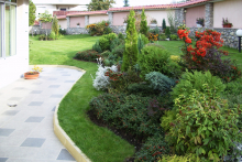 Озеленяване на двор, Драгалевци-8-0008
