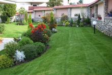 Озеленяване на двор, Драгалевци-9-0009