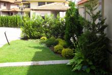 Озеленяване на двор в София, Драгалевци-10-0020