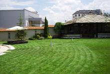 Озеленяване на двор в София, Драгалевци-7-0017