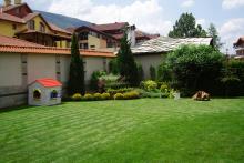 Озеленяване на двор в София, Драгалевци-9-0019