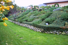 Озеленяване на двор в София, с. Лозен-2-0022