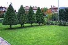Озеленяване на двор в София, с. Лозен-4-0024