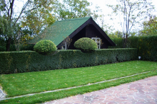 Озеленяване на двор в София, с. Лозен-8-0028