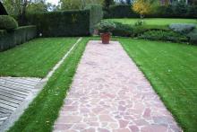 Озеленяване на двор в София, с. Лозен-9-0029