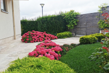 Озеленяване на вила в Лозенец, Бургас-1-0054