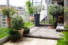 Озеленяване на тераса, София-5-0035