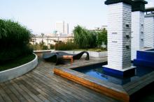 Озеленяване на тераса, София-9-0039
