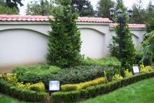 Озеленяване на вила-4-0046