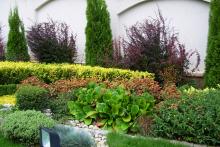 Озеленяване на вила-5-0047