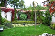 Озеленяване на вила-9-0051