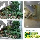 интериорно озеленяване офис сграда