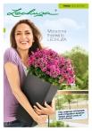 kashpi-katalog-lechuzare-trend-en-001-001