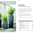 kasphi-saksii-katalog-lechuza-3-002-002