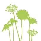 kasphi-katalog-last-giardino-002-002
