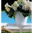 kasphi-katalog-last-giardino-014-014
