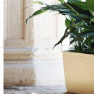 kasphi-katalog-last-giardino-016-016