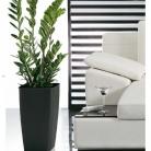 kasphi-katalog-last-giardino-038-038
