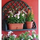 kasphi-katalog-last-giardino-056-056