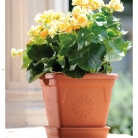 kasphi-katalog-last-giardino-080-080
