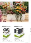 b2b-lechuza-pflanzgefaesse-sortiment-broschuere-de-2018-p055