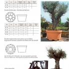 catalog_pb_it-en_22-p26