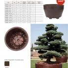 catalog_pb_it-en_22-p39