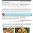 catalog_pb_it-en_22-p50