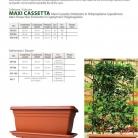 catalog_pb_it-en_22-p75