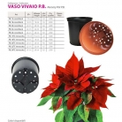 catalog_pb_it-en_22-p82