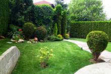 Поддръжка на градини и дворове-2