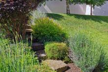Поддръжка на градини и дворове-21