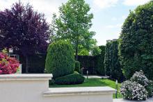 Поддръжка на градини и дворове-29
