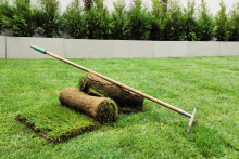 Поддръжка на градини и дворове-30