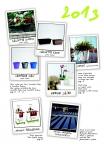 saksii-nikoli-katalog-web_2013-005-005