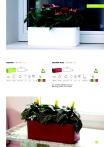saksii-nikoli-katalog-web_2013-013-013