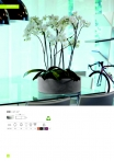 saksii-nikoli-katalog-web_2013-026-026