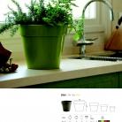 saksii-nikoli-katalog-web_2013-012-012