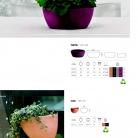 saksii-nikoli-katalog-web_2013-018-018