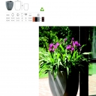 saksii-nikoli-katalog-web_2013-020-020