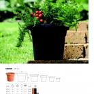 saksii-nikoli-katalog-web_2013-030-030